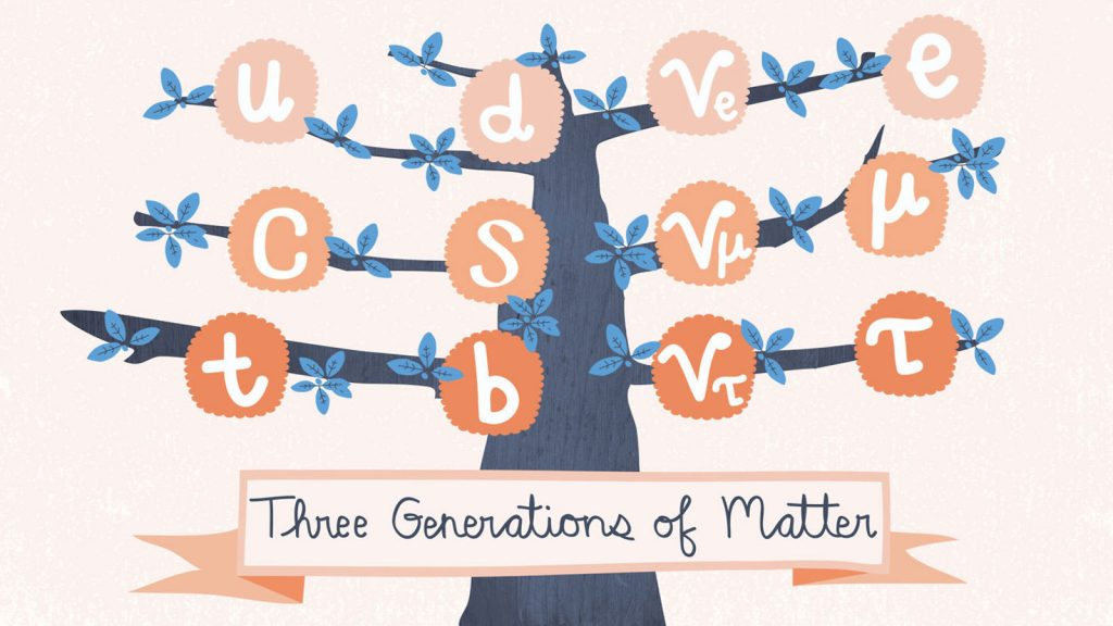 Illustration: tree showing three generations of matter