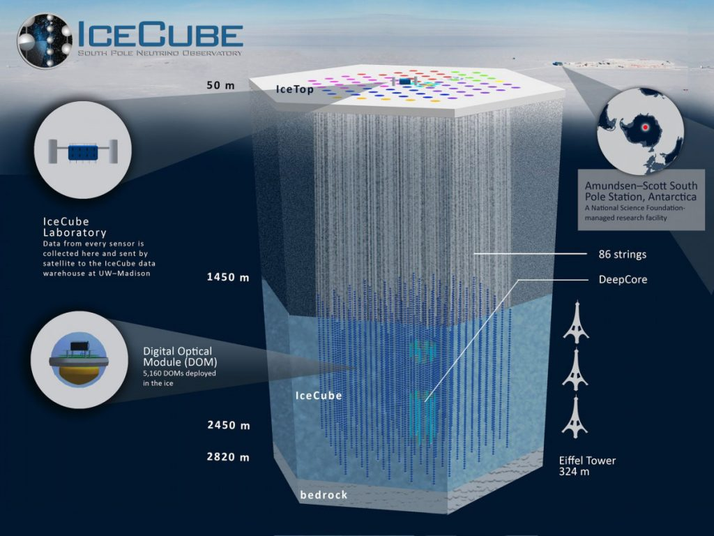 Graphic of the IceCube detector