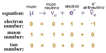 Graphic explaining lepton number